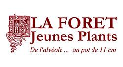 LA FORET JEUNES PLANTS
